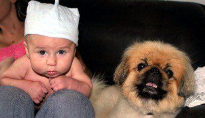 nenes-mascotas-2