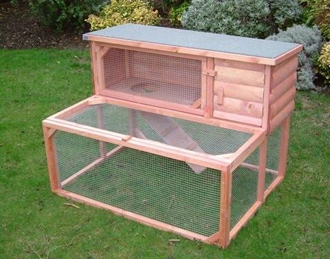 Una casa en condiciones para tu conejo - Casa conejo ...