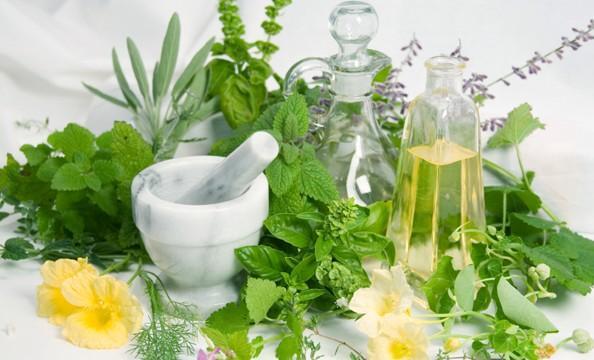 Homeopatía para mascotas