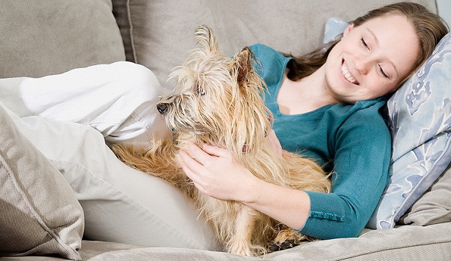 Beneficios de convivir con perros para las embarazadas