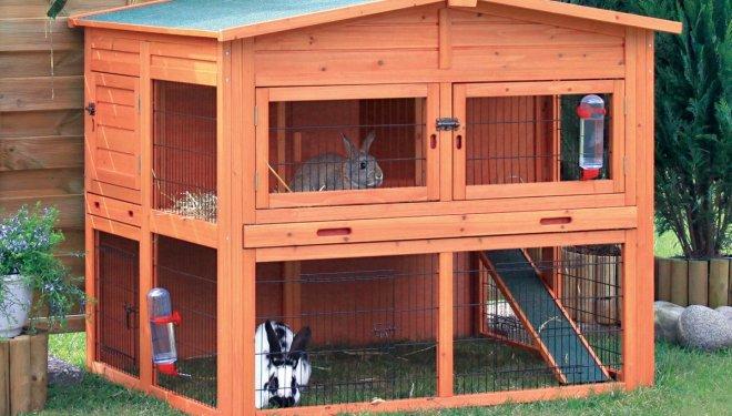 Elegir y preparar la jaula para el conejo - Casas para conejos enanos ...