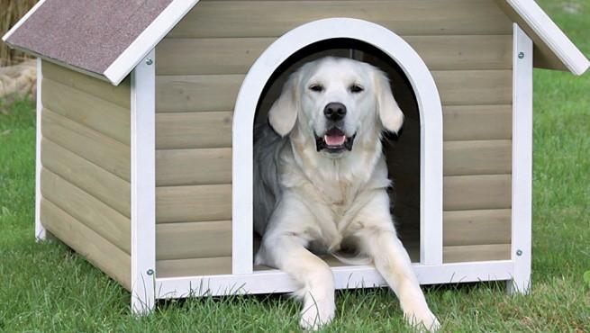 C mo elegir la caseta para el perro for Casetas de resina para jardin