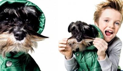 benetton_dog_collection_01