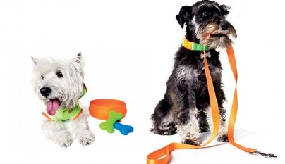 benetton_dog_collection_04