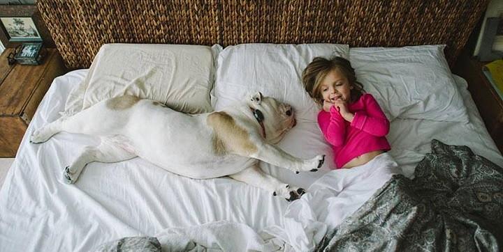 Una bonita amistad entre Harper y Lola1