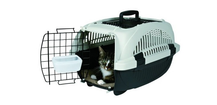 transportin gatos