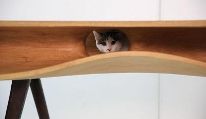 Original mesa para gatos4