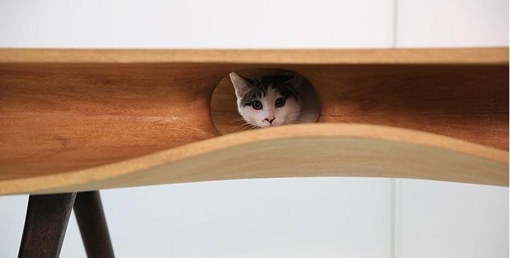 mesa para gatos1