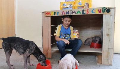 Nino refugio perros1