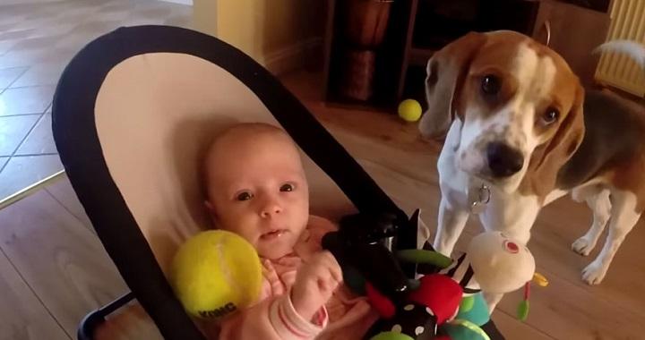 Charlie y Laura juguetes