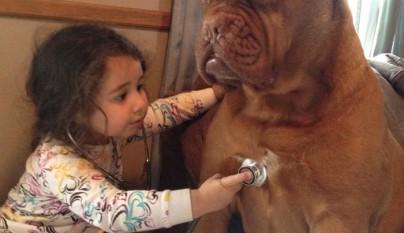 Fotos perros y bebes10