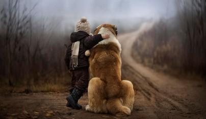 Fotos perros y bebes21