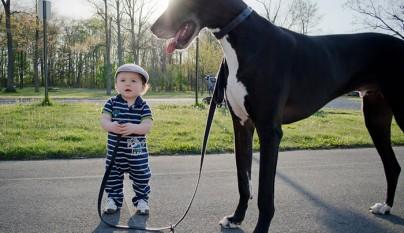 Fotos perros y bebes5
