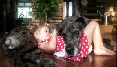 Fotos perros y bebes6