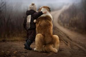 Bellas fotografías de perros grandes con pequeños bebés