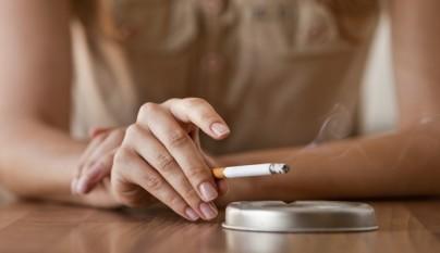 Peligro humo cigarro mascotas