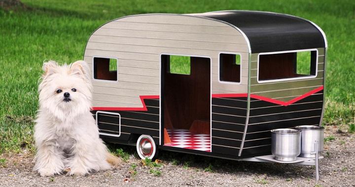 Caravanas perros