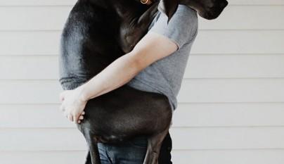 Perros abrazando humanos1