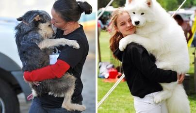 Perros abrazando humanos14