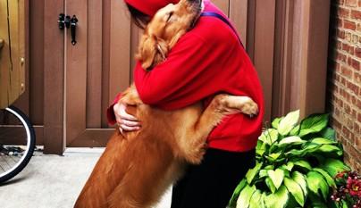 Perros abrazando humanos2