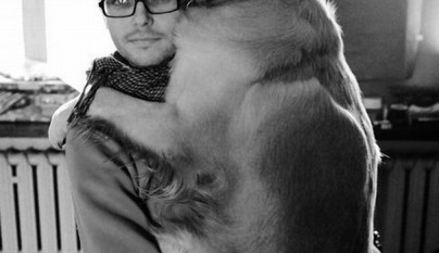 Perros abrazando humanos3