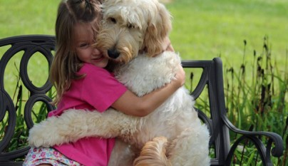 Perros abrazando humanos6