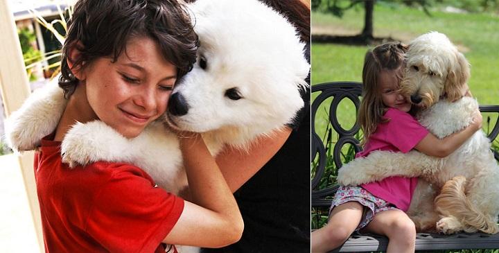 fotos perros abrazando humanos1