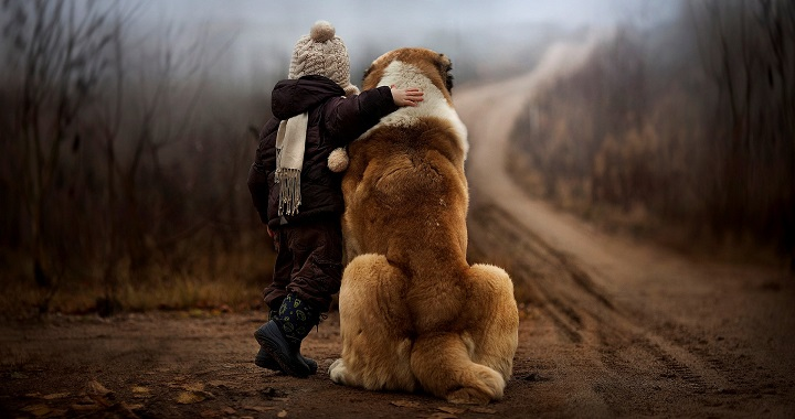 perro leal