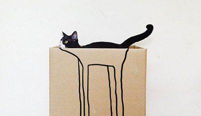 Gatos camuflados6