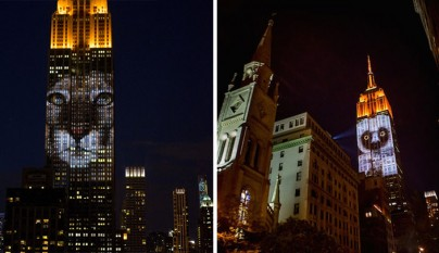 Empire State Racing Extinction 6