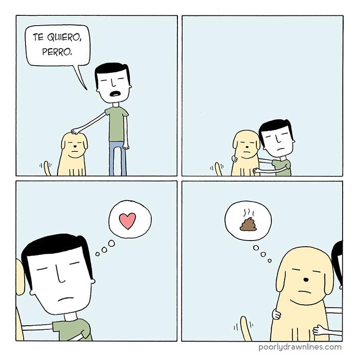 animales y personas 2