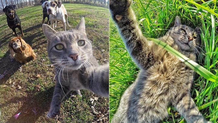 Manny selfies1