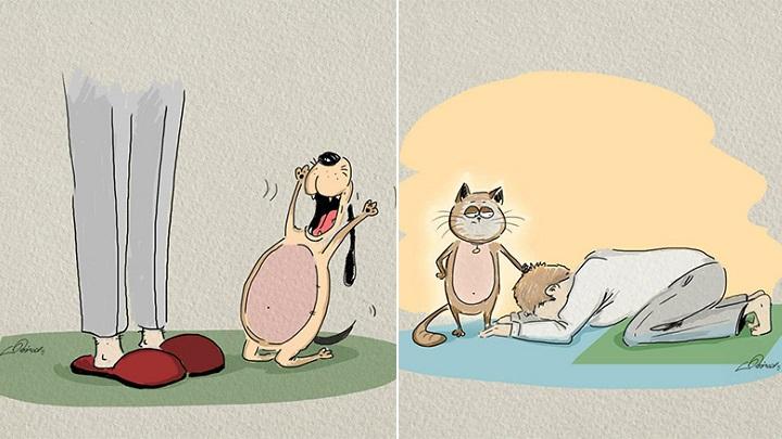 diferencias perros gatos ilustraciones1