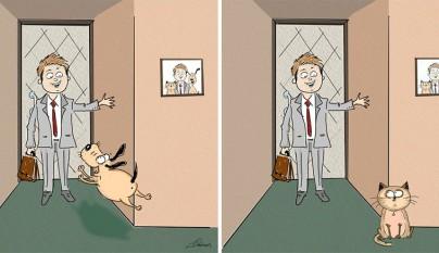 diferencias perros gatos2