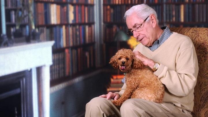 perros para ancianos