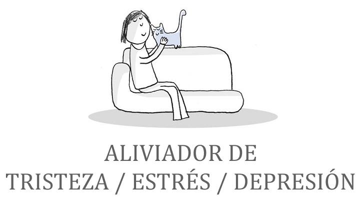 tareas gatunas ilustraciones1