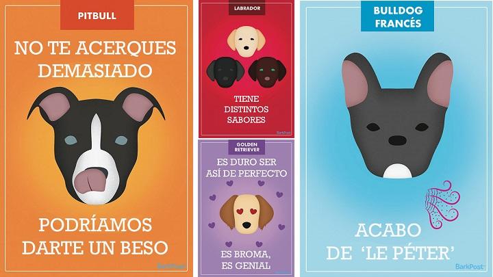 Esloganes perros1