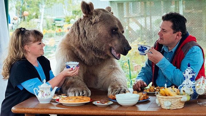 Stepan oso
