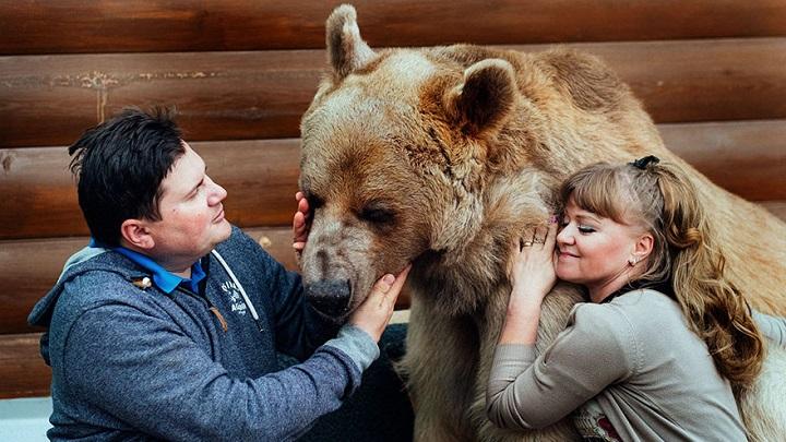 Stepan oso1