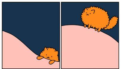 Comic gato12