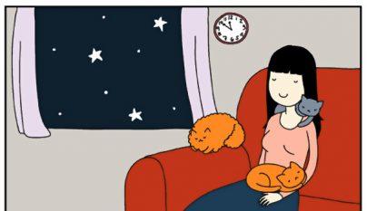 Comic gato14
