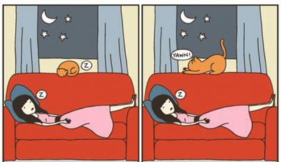 Comic gato7