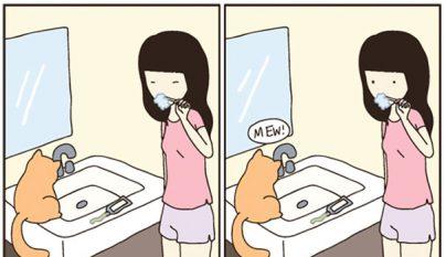 Comic gato9
