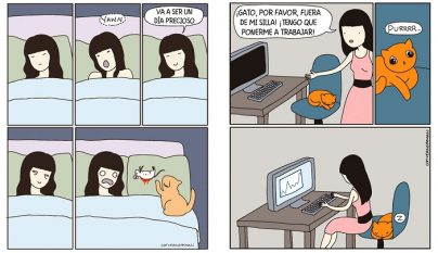 Comic realidad gato