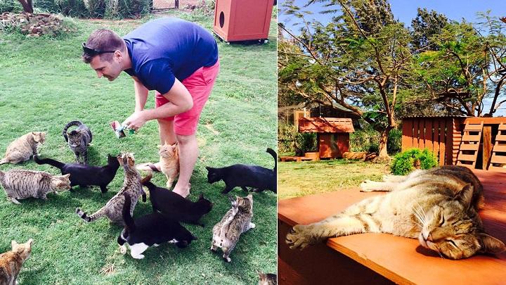 Lanai Cat Sanctuary foto1