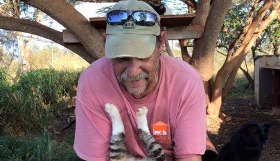 Lanai Cat Sanctuary5