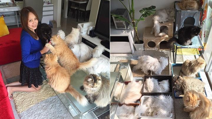 12-cats-lady-foto1