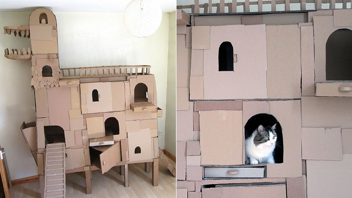 casa-de-carton-foto
