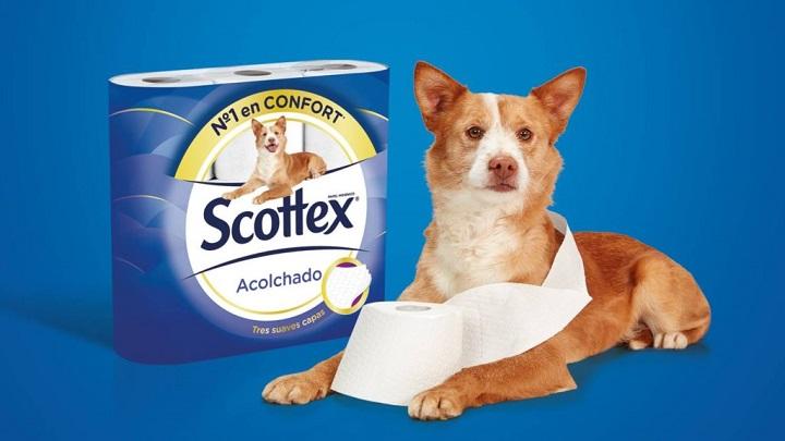 Scottex-Adopcion1