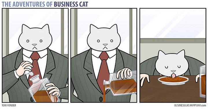 The-Adventures-of-Business-Cat-foto